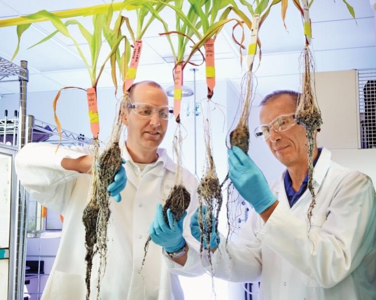 Bayer Crop Science инвестирует 1млрдевро висследования иразработки