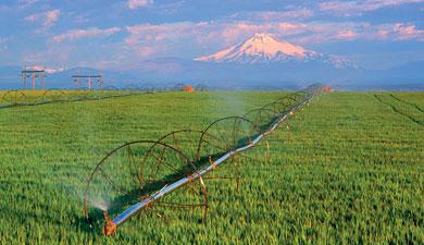 ВКитае иКолорадо исследовали тактику экономного полива