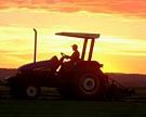 Право наограничение экспорта зерна вусловиях ВТО сохранится