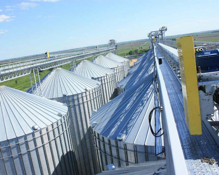Вэтом году изгосфонда будет реализовано 500 тысяч тонн зерна