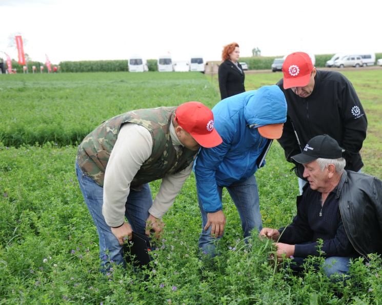 19-го сентября наТульской земле состоялся грандиозный международный День Поля поСилосной Кукурузе компании Лимагрен