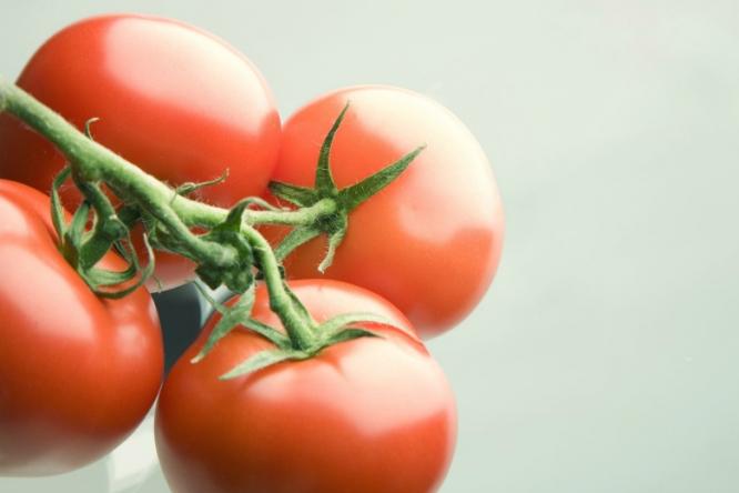 Всередине ноября 2017 года вРоссию прибыла первая после отмены эмбарго фура с20т томатов изТурции. Турецких томатов небыло нанашем рынке с1января 2016-го.