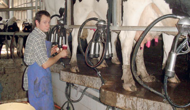 84% молока— российское