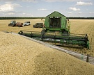 Продажи зерна за 5 месяцев выросли на 24%