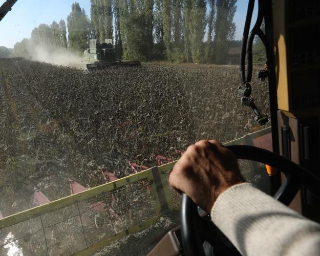 Наподдержку аграриев избюджета дополнительно выделили 10 млрд. руб.