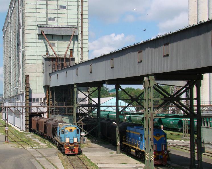 ОЗК вывезет 200 тысяч тонн зерна изНовосибирской области