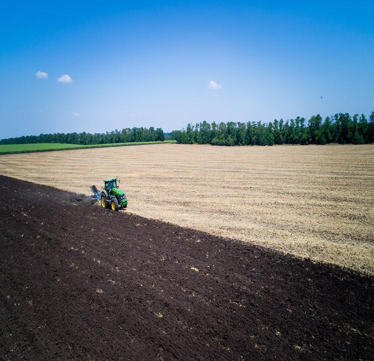 «Агрокомплекс» им.Ткачева покупает агрофирму у КЗП