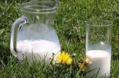 АЕБ: кондитерская отрасль столкнулась с нехваткой молочного сырья