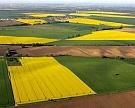 Минсельхоз отыщет владельцев сельхозземель