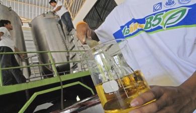 «Акмас» делает биотопливо изтравы исоломы
