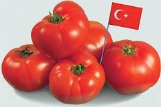Турецкие томаты разрешены кввозу вРоссию с1мая