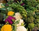 Пошлину на импорт овощей, орехов и сухофруктов могут снизить