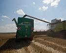 Сбор зерна должен составить по 115 млн тонн в год до 2020 года