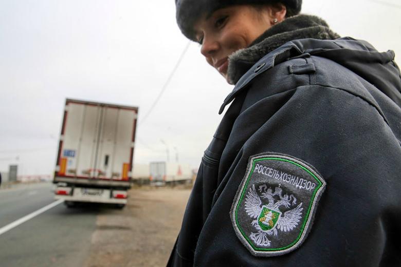 Год продэмбарго: как Россия уничтожала иностранную еду