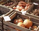Камчатский край готов потратить 1,7 млрд рублей, чтобы отказаться от китайских тепличных овощей