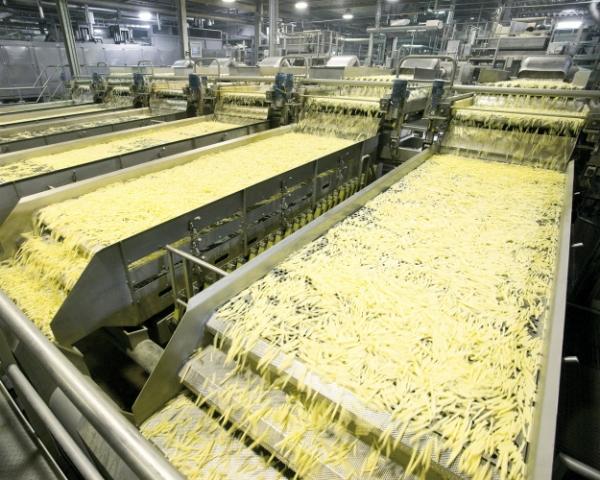 «Белая дача» вытеснит импорт. Компания строит завод по производству картофеля фри за €120 млн