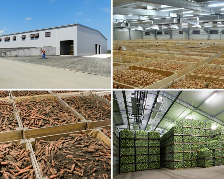 Новость партнера: Наплеменном заводе «Приневское» внедрена голландская технология для хранения овощей