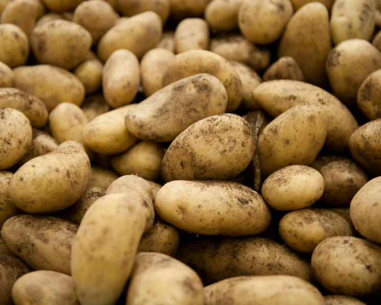 Россия удвоила импорт картофеля