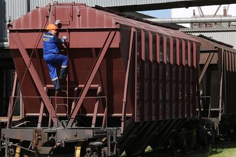 Экспорт подсолнечника и круп из ЕАЭС будет запрещен