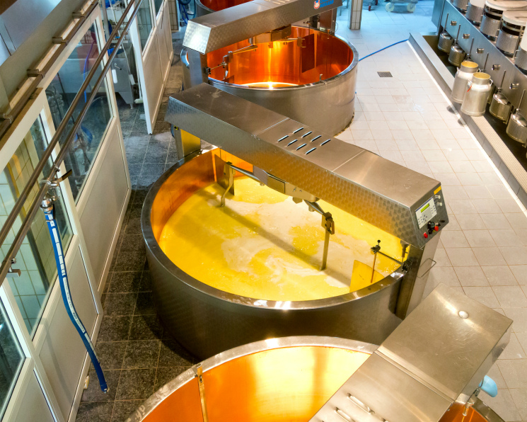 «Агриволга» идет впромпроизводство. Компания нарастит переработку молока в10 раз