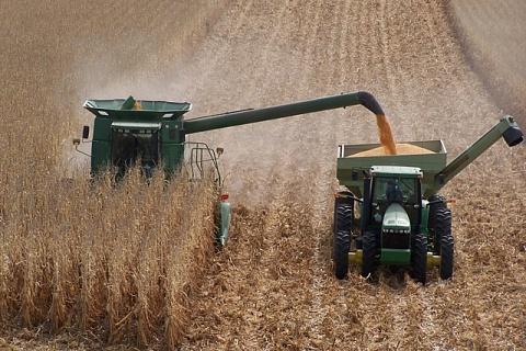 Минсельхоз США повысил прогноз урожая зерна в России