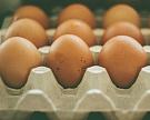 НаСахалине возник дефицит куриного яйца