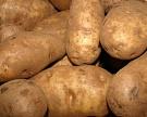 PepsiCo увеличит закупки российского картофеля