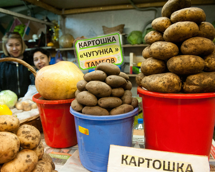 ЦБ: предложение дешевых овощей может сократиться