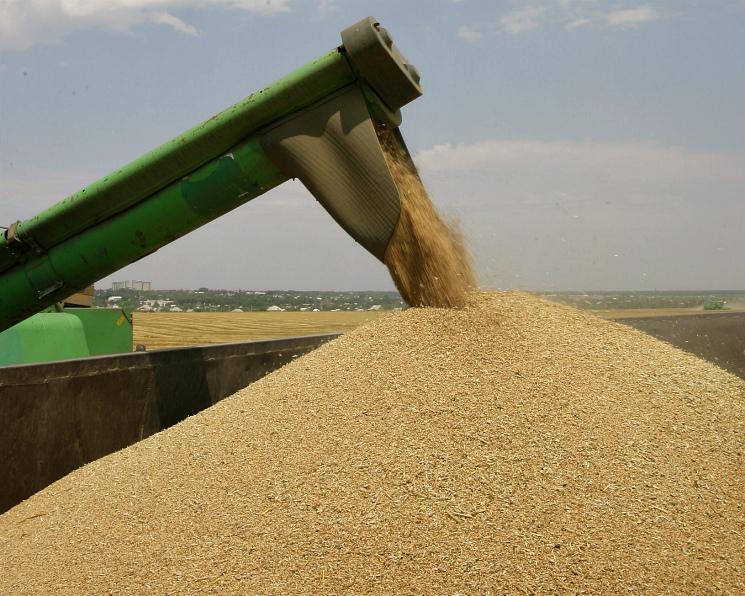 Внутренние цены на пшеницу перестали расти