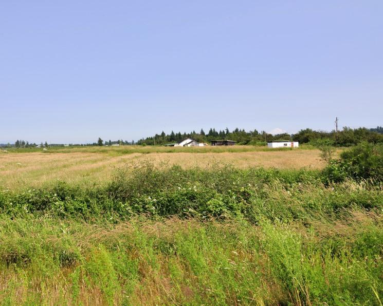 Аграриям возместят часть затрат на ввод сельхозземель в оборот