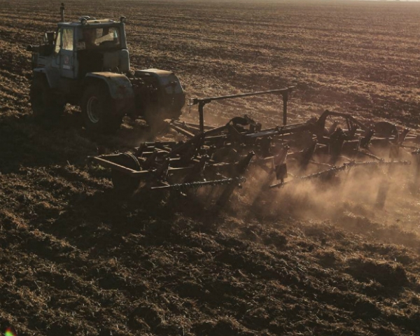 Посевная вновь подорожала, а доходность растениеводов снизилась на 10%