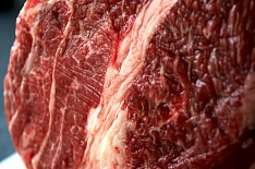 Россия начала экспорт говядины в Турцию