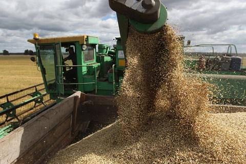 Экспорт зерна будет продолжаться в июне