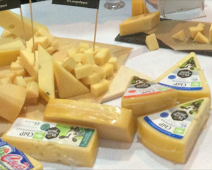 «АгриВолга» создает сырный кластер