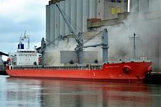 Россельхознадзор может запретить отгрузки зерна на экспорт