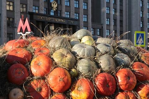 Депутаты Госдумы обеспокоены тотальной маркировкой товаров