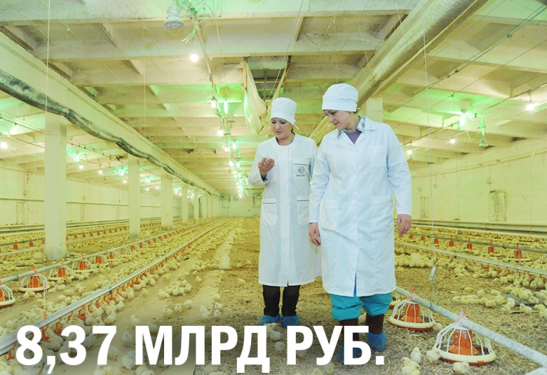 «Акашево» построит птицекомплекс за8,4млрдруб.