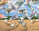Минсельхоз: на импортозамещение требуется еще 568 млрд рублей