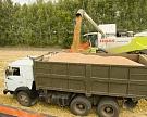 Минсельхоз просит Иран отменить запрет на ввоз пшеницы