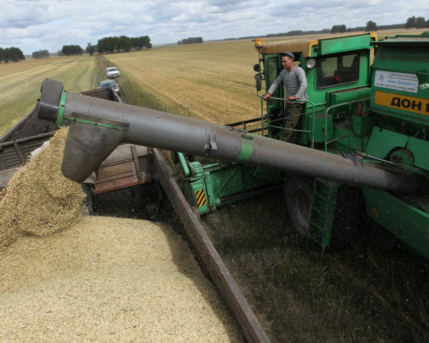 Россия потеряла 10 млн тонн зерна из-за нехватки комбайнов
