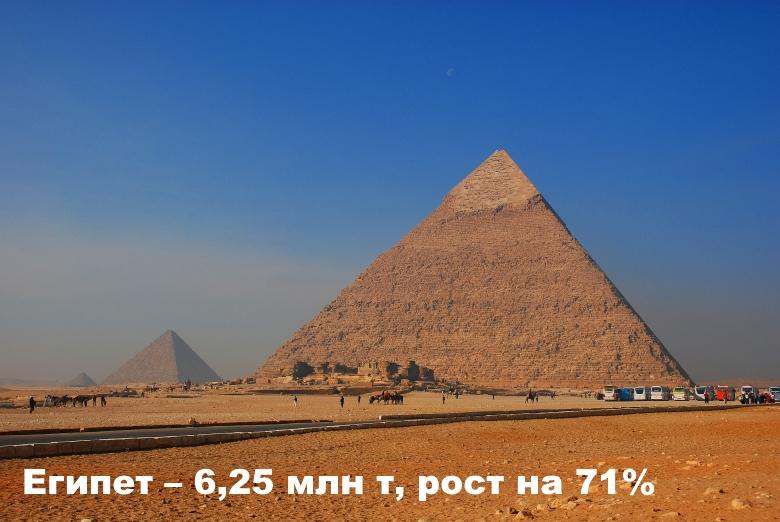 Египет— 6,25 млн т, рост на71%