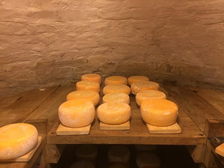 Сыр из пещеры. Казачьи традиции сыроделия в Воронежской области
