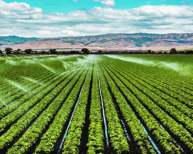 Россия планирует мелиорировать 700 тысяч гектаров до 2025 года