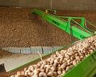 Дефицит мощностей для хранения плодоовощной продукции составляет 2 млн тонн