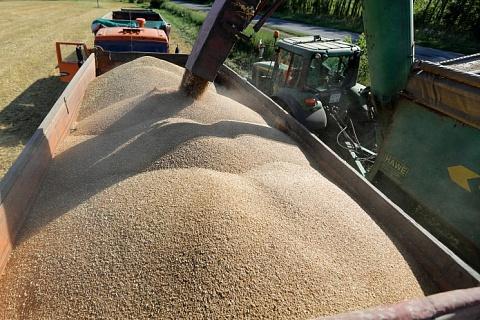 Цены на зерно могут пройти дно уже в июле