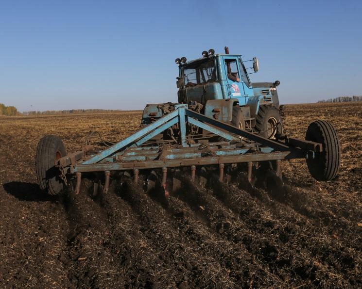 Сев озимых увеличится на90 тысяч гектаров