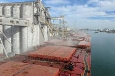 Экспорт зерна в ноябре снизится до 4,5 млн тонн