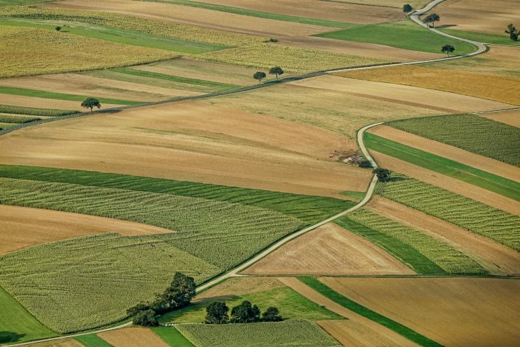 Топ-20 крупнейших землевладельцев