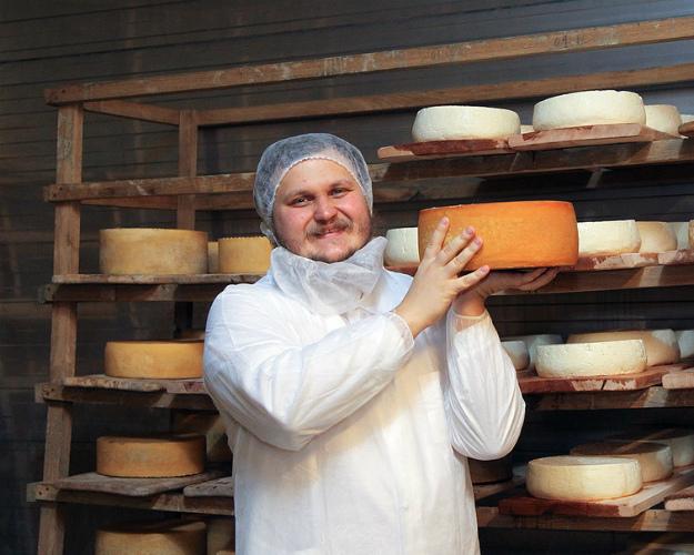 Сыровары просят Путина обновить санитарные нормы