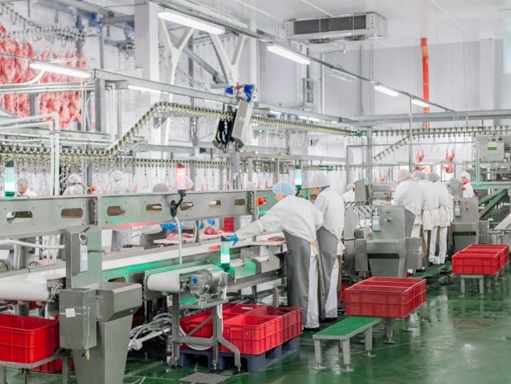ГК «Дамате» построит новый завод вПензенской области